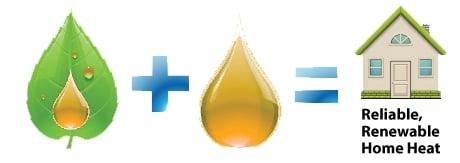 bioheat 1