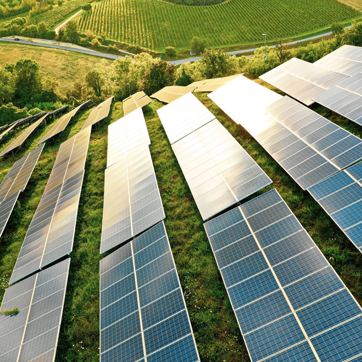 Learn More About Green Energy for Businesses Today
